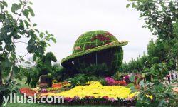 绿植造型景观
