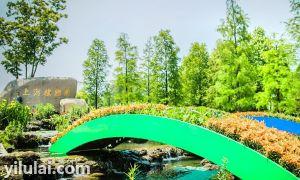 上海植物园入口